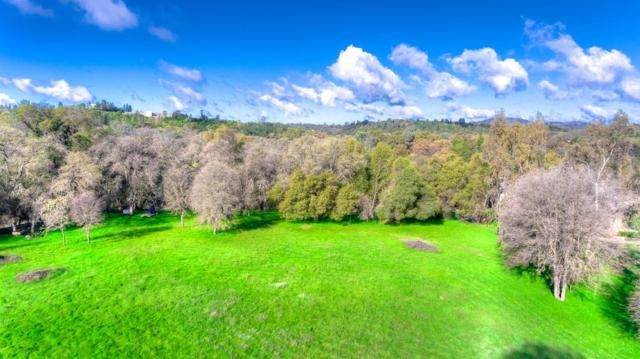 5281 Reservation Road, Placerville, CA 95667 (MLS #19021408) :: The Del Real Group