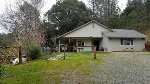 19700 Burnt Wheel Farm Road, Fiddletown, CA 95629 (MLS #19021480) :: Heidi Phong Real Estate Team