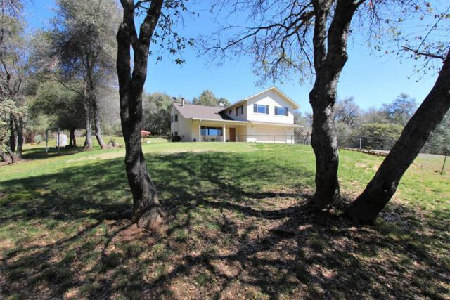 16860 Buckhorn Mountain, Sonora, CA 95370 (MLS #19021522) :: The Del Real Group