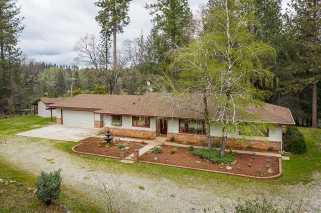 12430 Squirrel Creek Road, Grass Valley, CA 95945 (MLS #19021646) :: The MacDonald Group at PMZ Real Estate