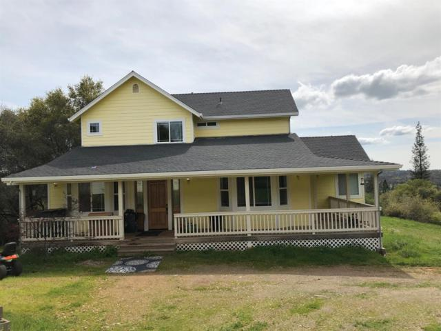18796 Martins Place, Grass Valley, CA 95949 (MLS #19021794) :: Heidi Phong Real Estate Team