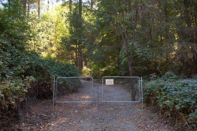 2000 Swansboro Road, Placerville, CA 95667 (MLS #19021988) :: The Del Real Group