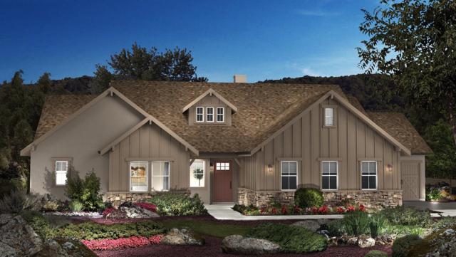 18097 Harvest Court, Plymouth, CA 95669 (MLS #19022045) :: Heidi Phong Real Estate Team