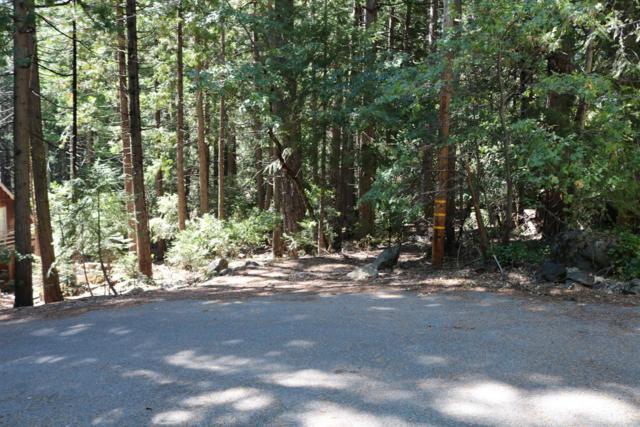 30 Cedar Lane, Sierra City, CA 96125 (MLS #19022054) :: REMAX Executive