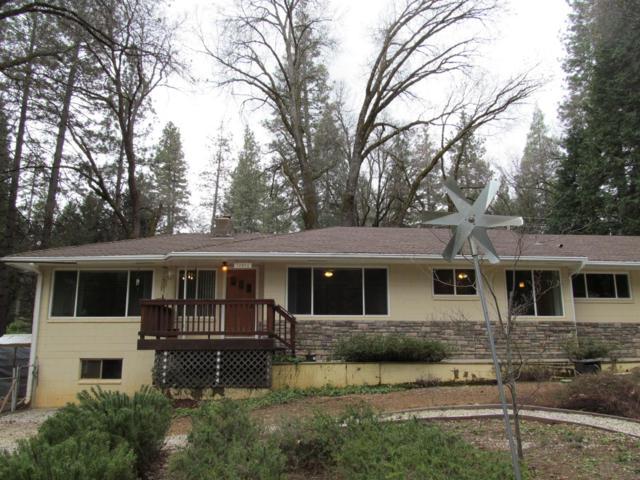 12855 Greenhorn Road, Grass Valley, CA 95945 (MLS #19022094) :: The MacDonald Group at PMZ Real Estate