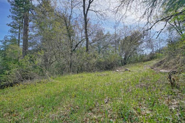 0 Tranquil Creek, Placerville, CA 95667 (MLS #19022114) :: Keller Williams Realty