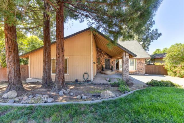 2540 Morgan Court, Rocklin, CA 95677 (MLS #19022378) :: The MacDonald Group at PMZ Real Estate