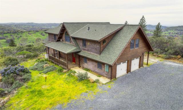 12690 Hallwood Place, Grass Valley, CA 95949 (MLS #19022620) :: Heidi Phong Real Estate Team