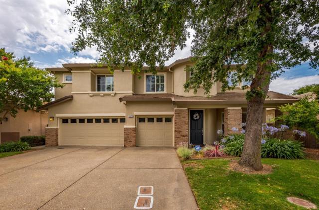 1576 Daunting Drive, El Dorado Hills, CA 95762 (MLS #19022635) :: Heidi Phong Real Estate Team