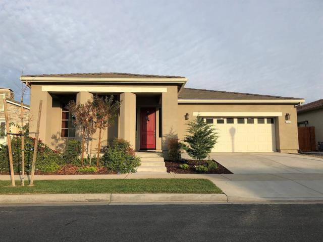 1243 Bluegrass Court, Oakdale, CA 95361 (MLS #19022913) :: The MacDonald Group at PMZ Real Estate