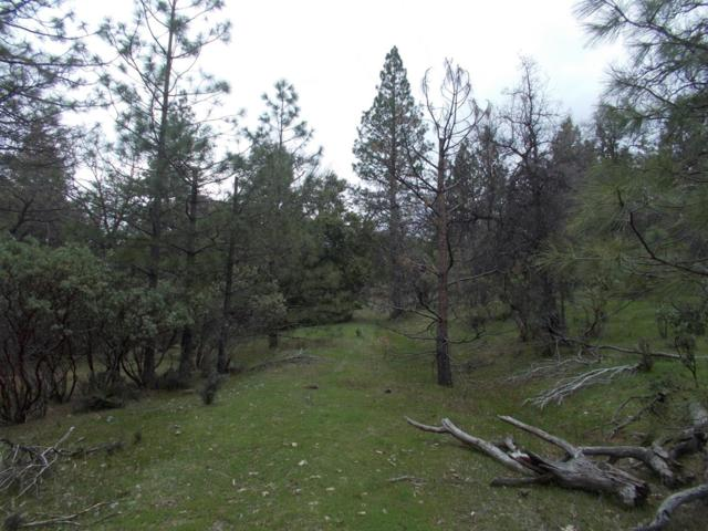 0 2451 Bald Mountain Road, West Point, CA 95255 (MLS #19023110) :: The Del Real Group