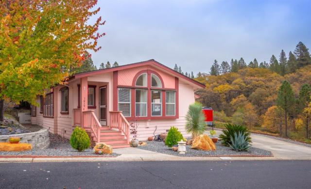10196 Grant Court, Grass Valley, CA 95949 (MLS #19023293) :: Dominic Brandon and Team