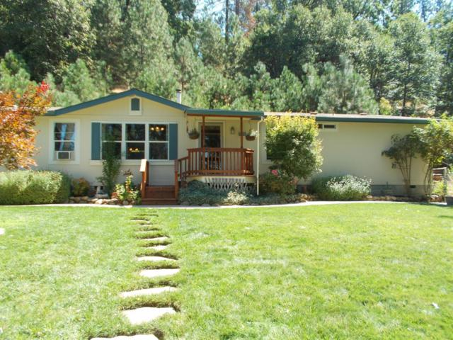 1086 Dorothy Way, West Point, CA 95255 (MLS #19023405) :: The Del Real Group