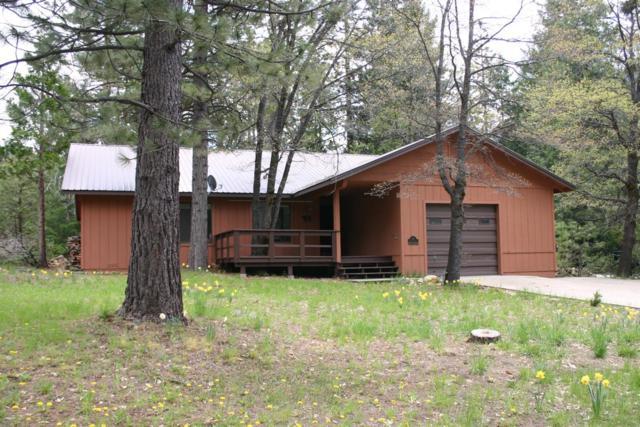 432 Tamarack Bend, Sierra City, CA 96125 (MLS #19023406) :: REMAX Executive