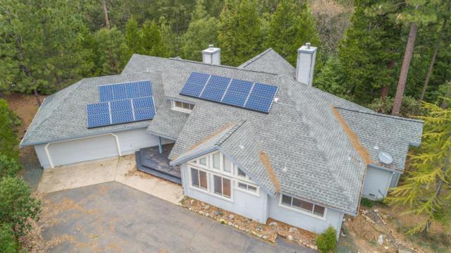 13951 Pine Park Loop, Pine Grove, CA 95665 (MLS #19023578) :: The MacDonald Group at PMZ Real Estate