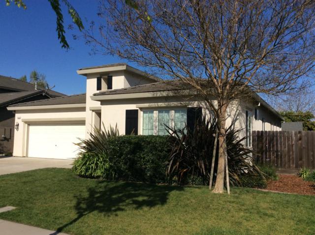 3378 Silverwood Street, Escalon, CA 95320 (MLS #19023581) :: The Del Real Group