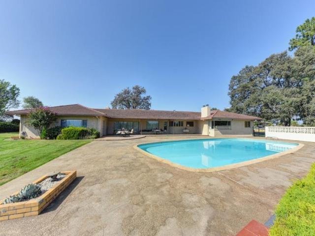710 Sierra Drive, Placerville, CA 95667 (MLS #19023631) :: Keller Williams Realty