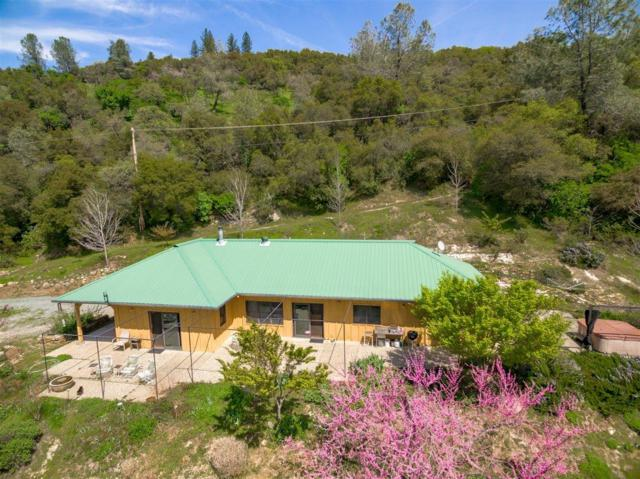 1180 Box Canyon Road, Placerville, CA 95667 (MLS #19023918) :: Keller Williams Realty