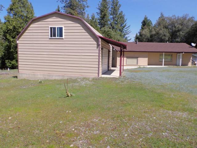15833 Pioneer Creek Rd., Pioneer, CA 95666 (MLS #19024161) :: Keller Williams Realty