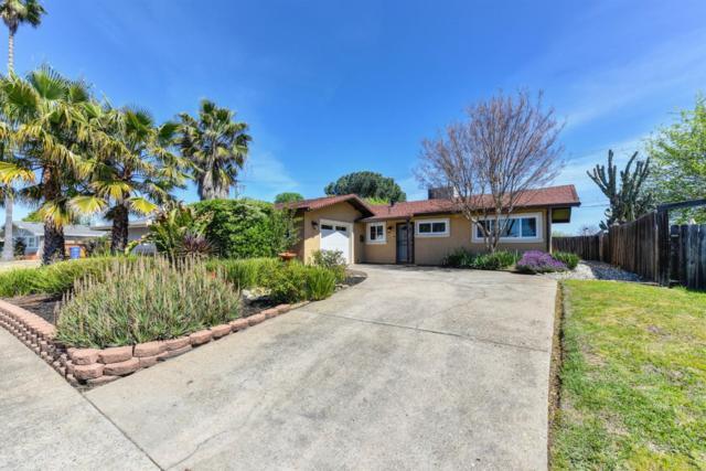 205 Rugosa Drive, Folsom, CA 95630 (MLS #19024284) :: Keller Williams - Rachel Adams Group