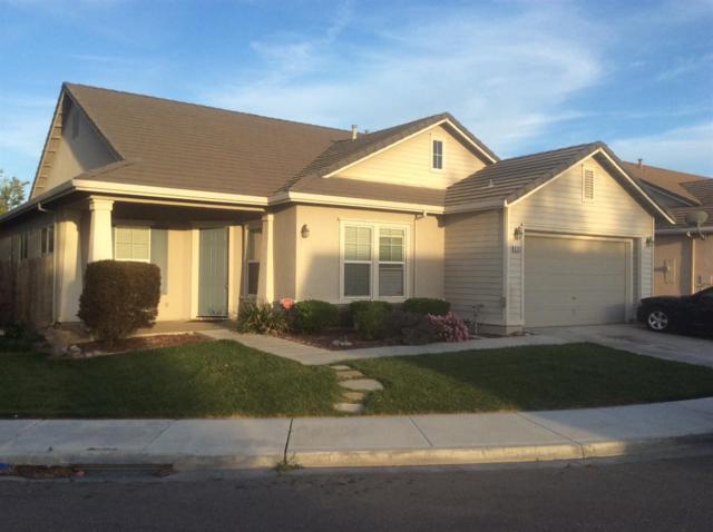 626 Bunting Lane, Newman, CA 95360 (MLS #19024477) :: Keller Williams Realty