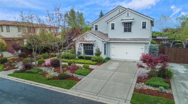 9705 Duckweed Street, Roseville, CA 95747 (MLS #19024636) :: Keller Williams - Rachel Adams Group