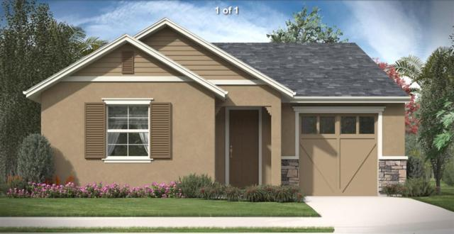 2822 Winesap Circle, Placerville, CA 95667 (MLS #19024820) :: The MacDonald Group at PMZ Real Estate