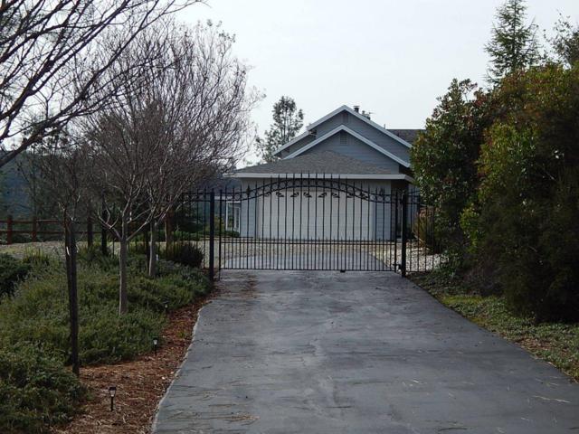 1500 Hidden Bridge Road, El Dorado Hills, CA 95762 (MLS #19024828) :: The MacDonald Group at PMZ Real Estate