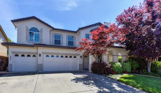 2035 Taft Drive, Rocklin, CA 95765 (MLS #19024926) :: Keller Williams - Rachel Adams Group