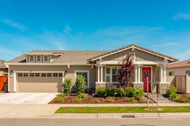 2360 Mustang Drive, Oakdale, CA 95361 (MLS #19024971) :: The Del Real Group