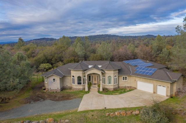 12250 Hallwood Place, Grass Valley, CA 95949 (MLS #19024979) :: Heidi Phong Real Estate Team
