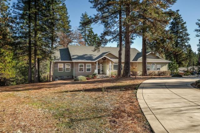 13590 Elderberry Court, Pine Grove, CA 95665 (MLS #19025006) :: The MacDonald Group at PMZ Real Estate