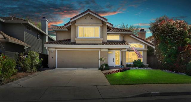 1862 Camellia Drive, Tracy, CA 95376 (MLS #19025113) :: The Del Real Group