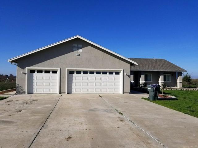 1243 Fig Avenue, Patterson, CA 95363 (MLS #19025129) :: Keller Williams Realty