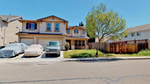 710 Skimmer Drive, Patterson, CA 95363 (MLS #19025149) :: The Del Real Group