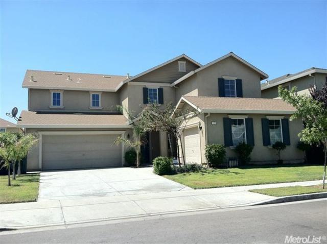 321 Summer Phlox Lane, Patterson, CA 95363 (MLS #19025182) :: The Del Real Group