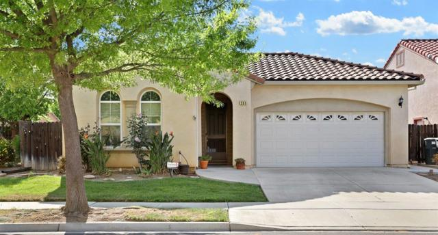 231 Fall Avenue, Patterson, CA 95363 (MLS #19025298) :: The Del Real Group