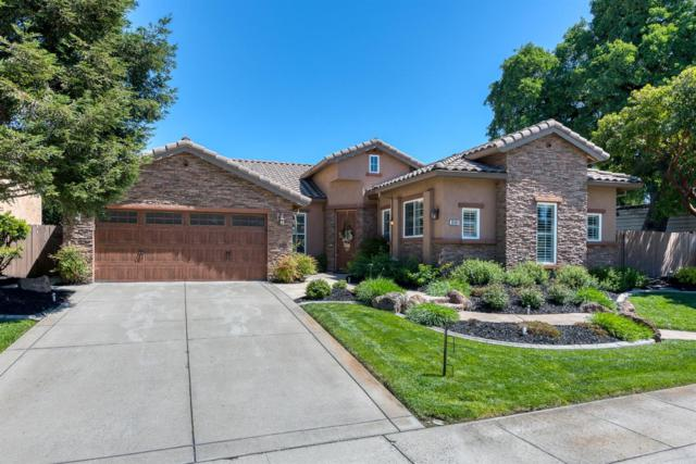 9361 Palmerson Drive, Antelope, CA 95843 (MLS #19025328) :: Dominic Brandon and Team