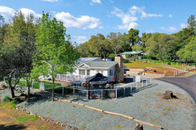 11718 Punter Ranch Road, Sonora, CA 95370 (MLS #19025454) :: The MacDonald Group at PMZ Real Estate