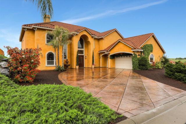 3810 Iron Wheel Court, Rocklin, CA 95765 (MLS #19025514) :: The MacDonald Group at PMZ Real Estate