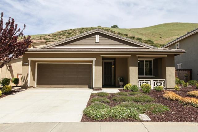 9069 Golf Canyon Drive, Patterson, CA 95363 (MLS #19025523) :: The Del Real Group