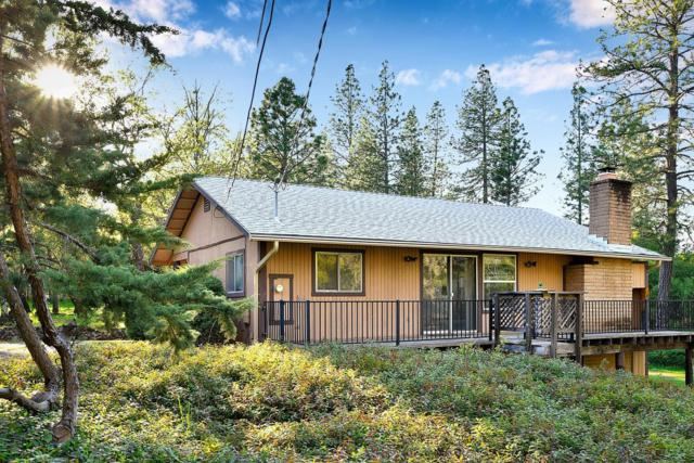 11584 Pleasant Valley Road, Penn Valley, CA 95946 (MLS #19025611) :: The Del Real Group