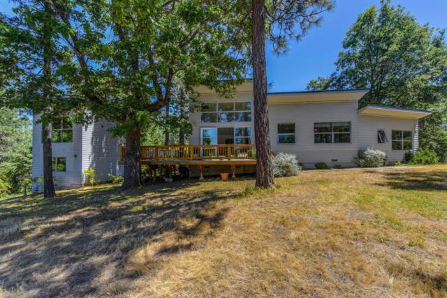22080 Fiddletown Road, Volcano, CA 95689 (MLS #19026072) :: eXp Realty - Tom Daves