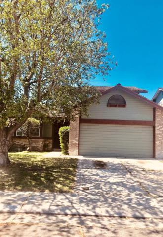 16155 Tumbleweed Lane, Lathrop, CA 95330 (MLS #19026248) :: REMAX Executive