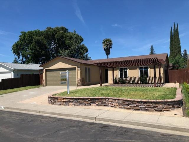 507 Greenwood Street, Vacaville, CA 95687 (MLS #19026335) :: REMAX Executive