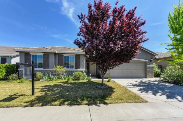 3049 Morley Lane, Roseville, CA 95747 (MLS #19026390) :: Dominic Brandon and Team