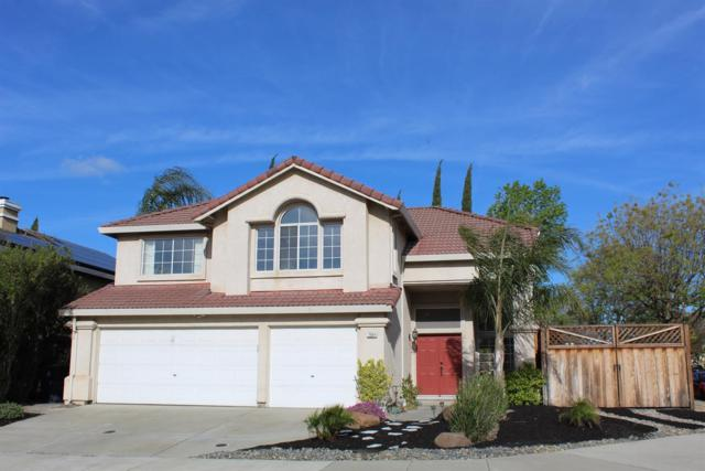 2684 Christy Street, Tracy, CA 95376 (MLS #19026697) :: REMAX Executive