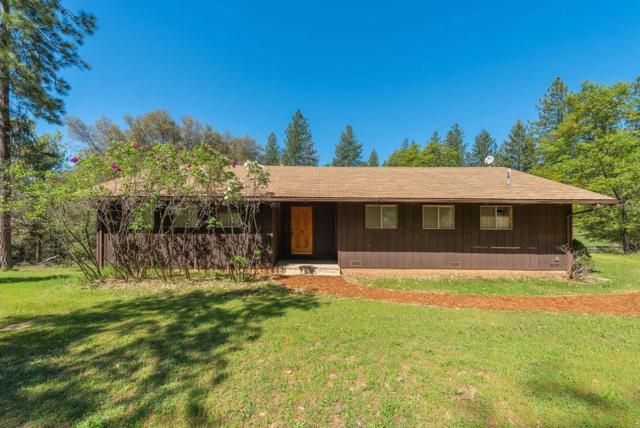 717 Stanley Road, West Point, CA 95255 (MLS #19026704) :: REMAX Executive