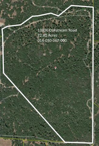 13800 Oakstream Road, Plymouth, CA 95669 (MLS #19026897) :: eXp Realty - Tom Daves