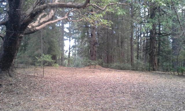 25647 Sugar Pine Drive, Pioneer, CA 95666 (MLS #19027920) :: Keller Williams - Rachel Adams Group